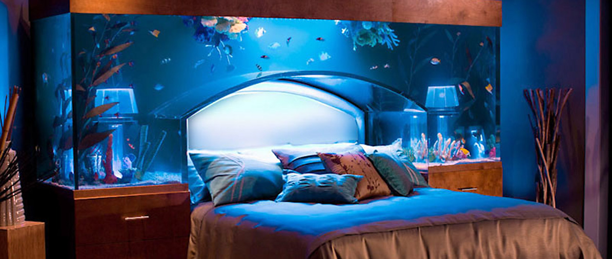 Aquarium design some interesting considerations on subject Beautiful aquariums for home