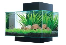 Great Choice of Aquarium Kits