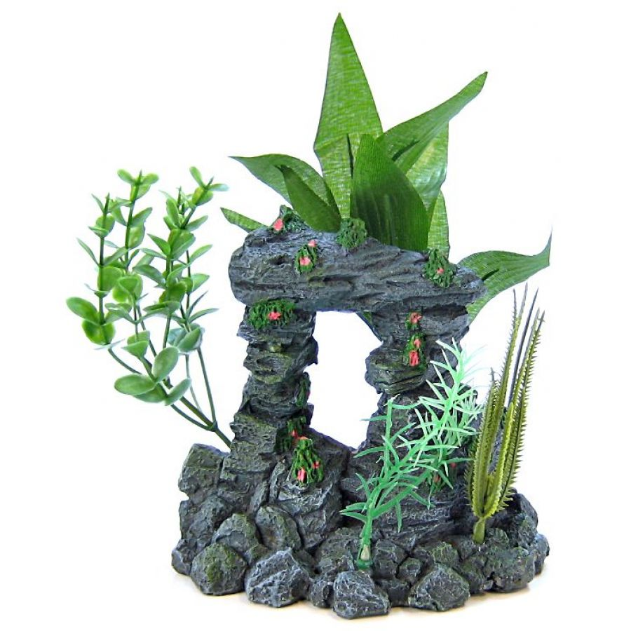 Aquarium Ornaments to Beautify Your Tank