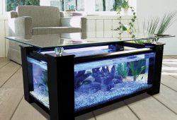 Coffee Table Fish Aquarium