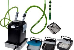 Establish and Improve the Fish Tank Filter Systems