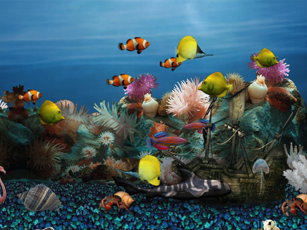 Things To Consider Before Choosing Discount Fish Tanks