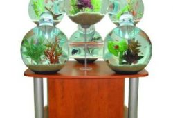 Home Fish Aquarium Equipment