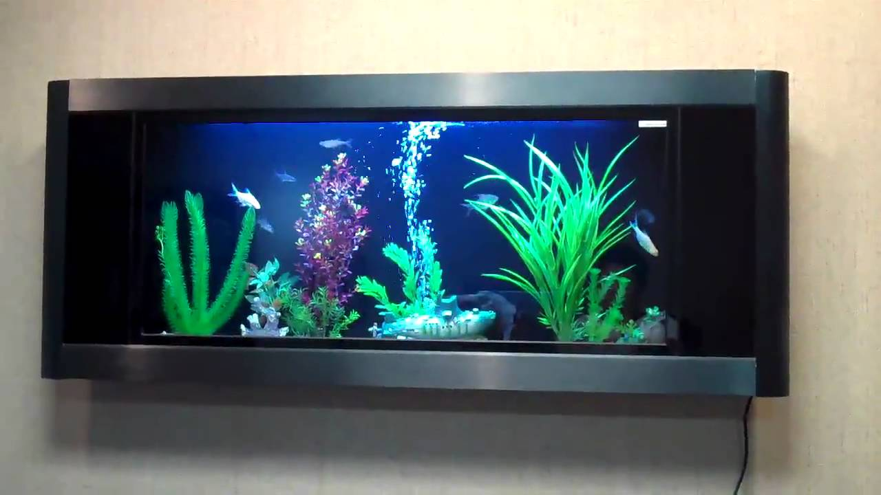 Installing A Wall Fish Tank Some Information On Subject