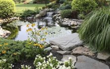 Large ponds for large gardens