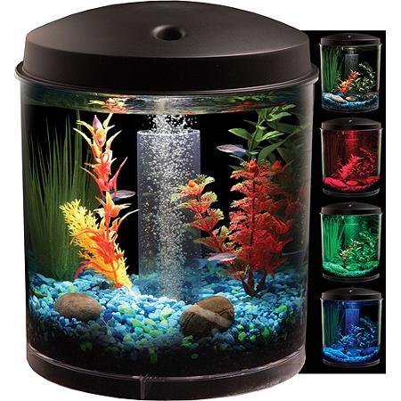 The Incipient Aquarium Hobbyist