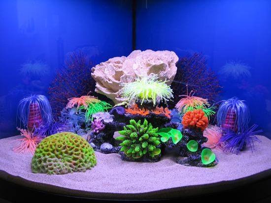 Information On Aquarium Decorations