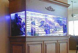 Fish Tank Canopy