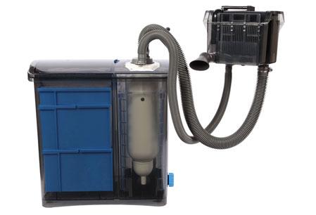 Getting the Right Aquarium Filter